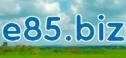 E 85 Logo